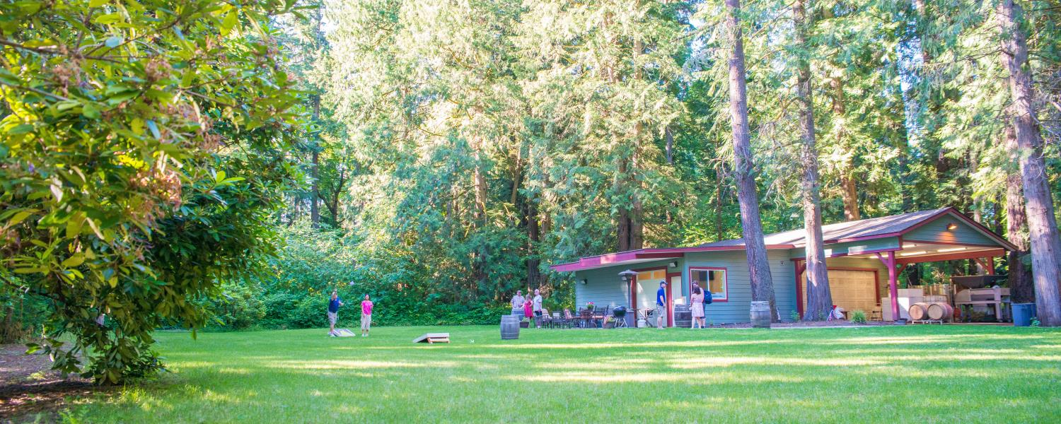 Cedar River Cellars Picnic Area is a large park-like space with green grass and tall old growth cedar trees.  A couple are playing the game cornhole.